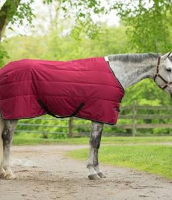 SmartPak Monday Morning Feed: Get Cozy!