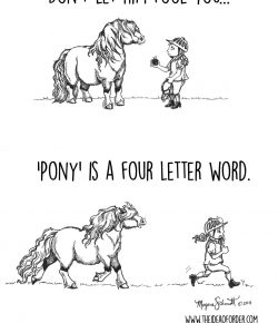 The Idea of Order: Ponies…