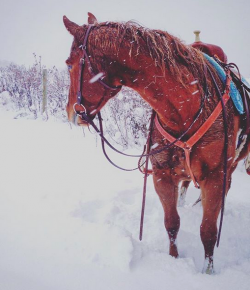 11 Signs You Might Be a Fair-Weather Rider