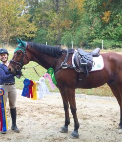 Grand Prix Dreams on an OTTB Budget