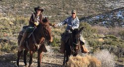 Living on the Ranch: Elvis Has Left the Building