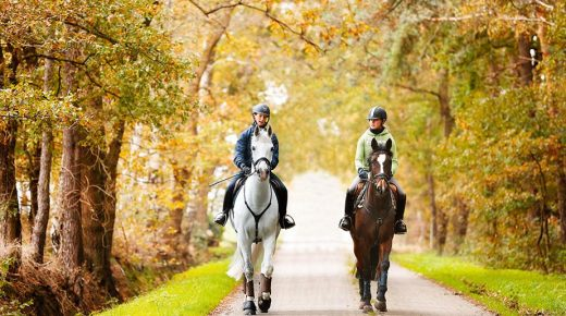 Our Responsibility As Riders