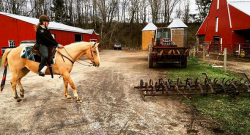 #TBT: 11 Random Things My Horses Have Spooked At