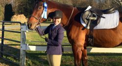 Reader Horse of the Week: Valentino