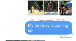 Best of JN: Texts From the Horse Show Husband