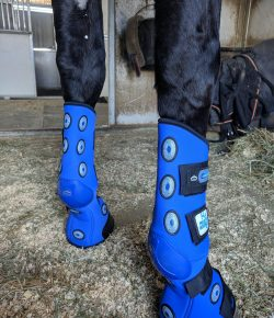 Product Review: Veredus 4 Hour Magnetik Stable Boots