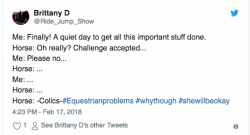 13 #EquestrianProblems According to Twitter