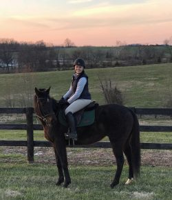 Meagan's RRP Thoroughbred Makeover Journey: Baby Flash's First Vertical
