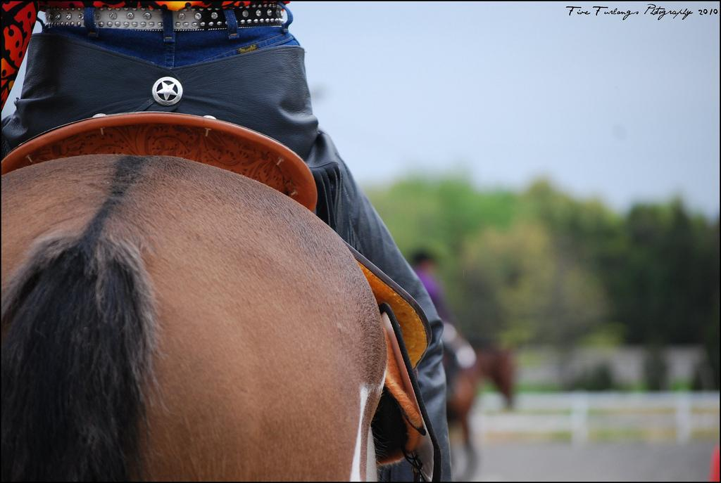 Editorial: An Open Letter to the Rider With the 'Made' Horse