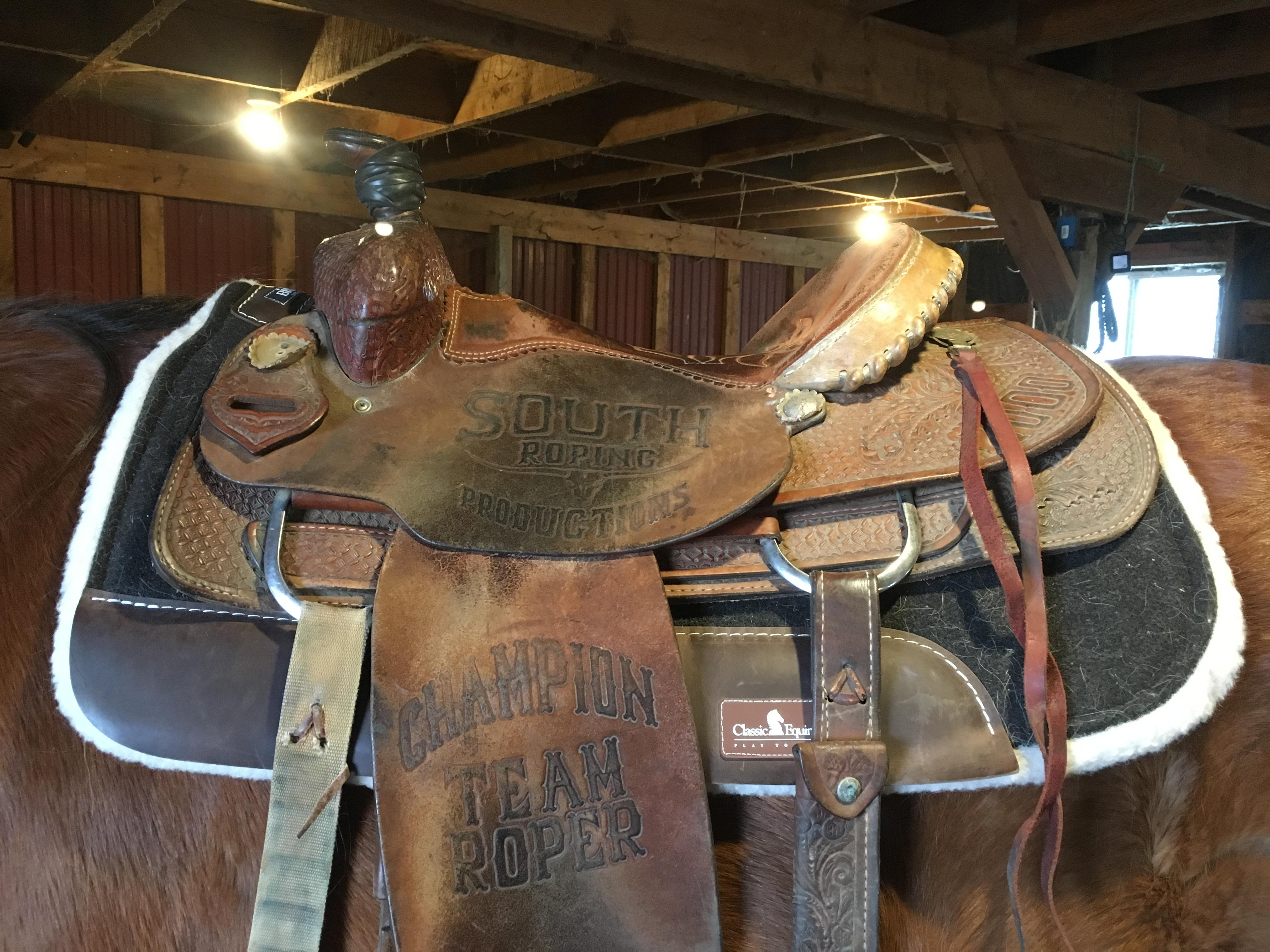 Product Review: Classic Equine BioFit Correction Fleece Pad