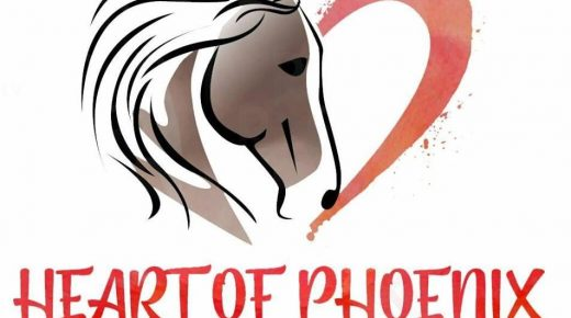 Standing Ovation by Ovation Riding: Heart of Phoenix Equine Rescue
