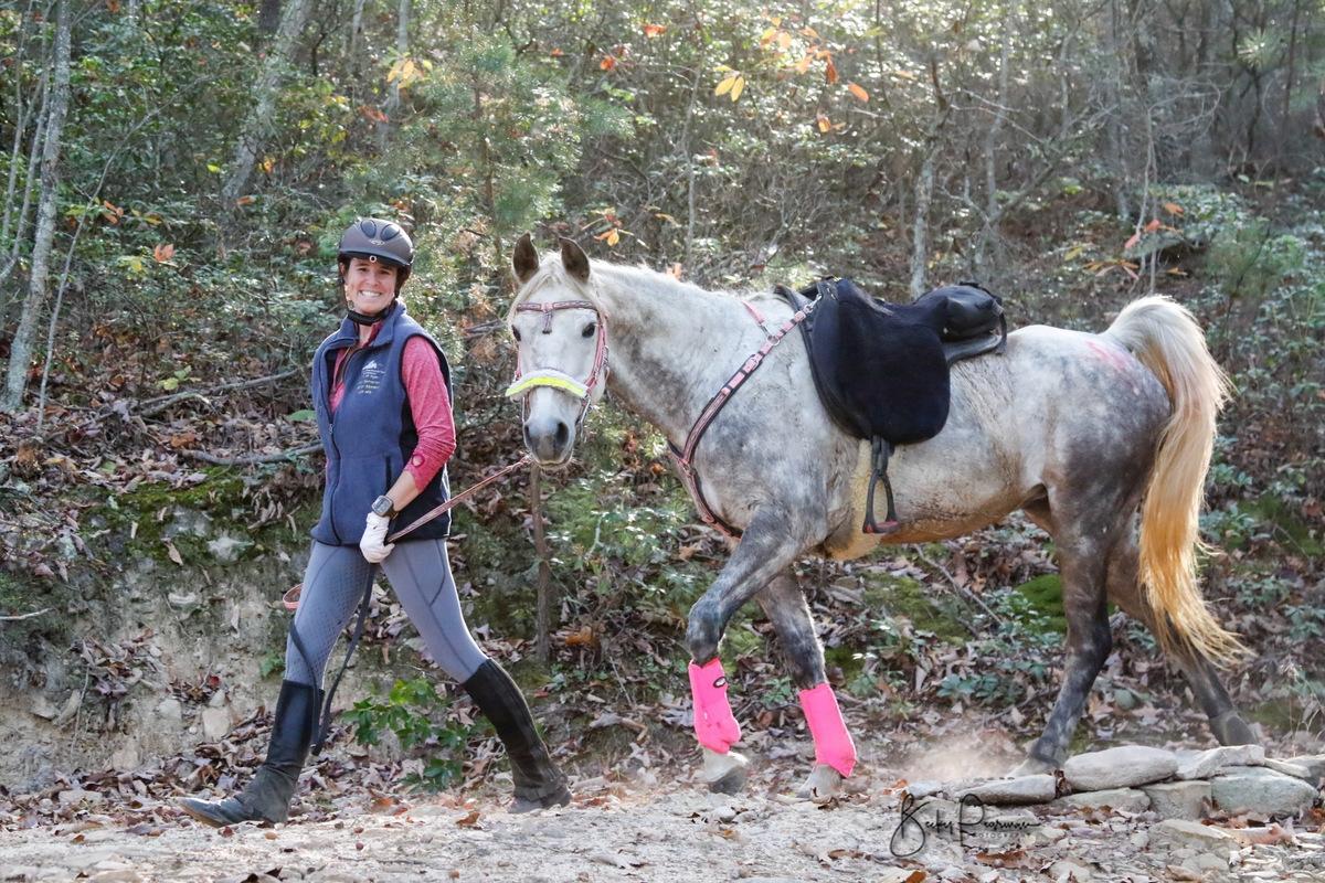 racing endurance horses