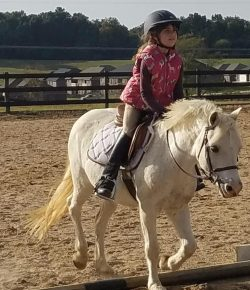 Confessions of a Pony Kid: Learning to Ride New Horses