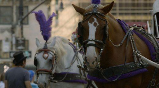 Movie Review: 'The Last Horsemen of New York'