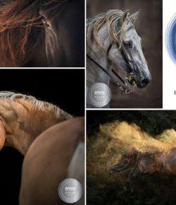 Louise Sedgman's Ethereal Photography Of Women & Horses
