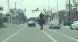 Thursday Video: Police Horse Pull Over