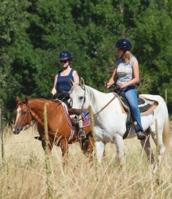 9 Reasons Riding With Non-Horse People Is Awesome