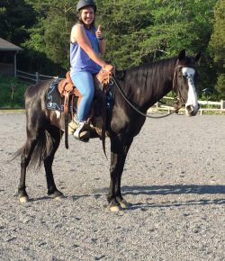 So You Want To Rescue An Auction Horse, Part IV: Buying Your Horse