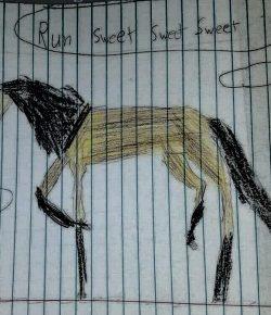 International Lesson Horse Day Essay Winner: Jazzy