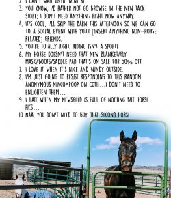The Idea of Order: 10 Things An Equestrian Would NEVER Say