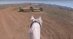 World Equestrian Brands Helmet Cam: Skyline