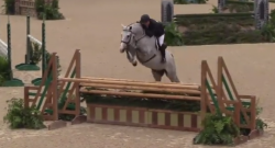 EcoVet Performance of the Week