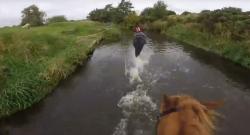 World Equestrian Brands Helmet Cam: Hunter Trials