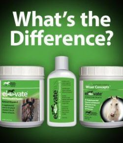 Kentucky Performance Products: Elevate W.S. vs Elevate Powders