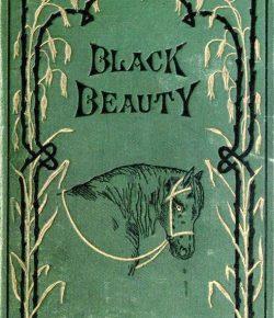 10 Horsey Novels For Your Summer List