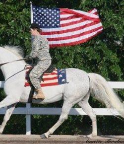 Photo Challenge: 3 Parade-Ready Horses