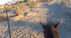 World Equestrian Brands Helmet Cam: OTTB Archery