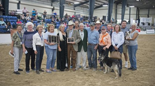 Ira Schulman Thoroughbred Rehoming Award Open For Nominations