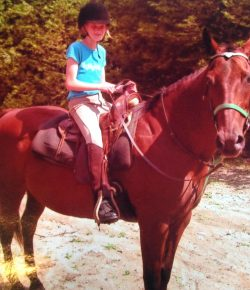 Essay: If Wishes Were Horses