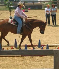 A Well-Rounded Cowgirl, Part I: The Judge's Perspective