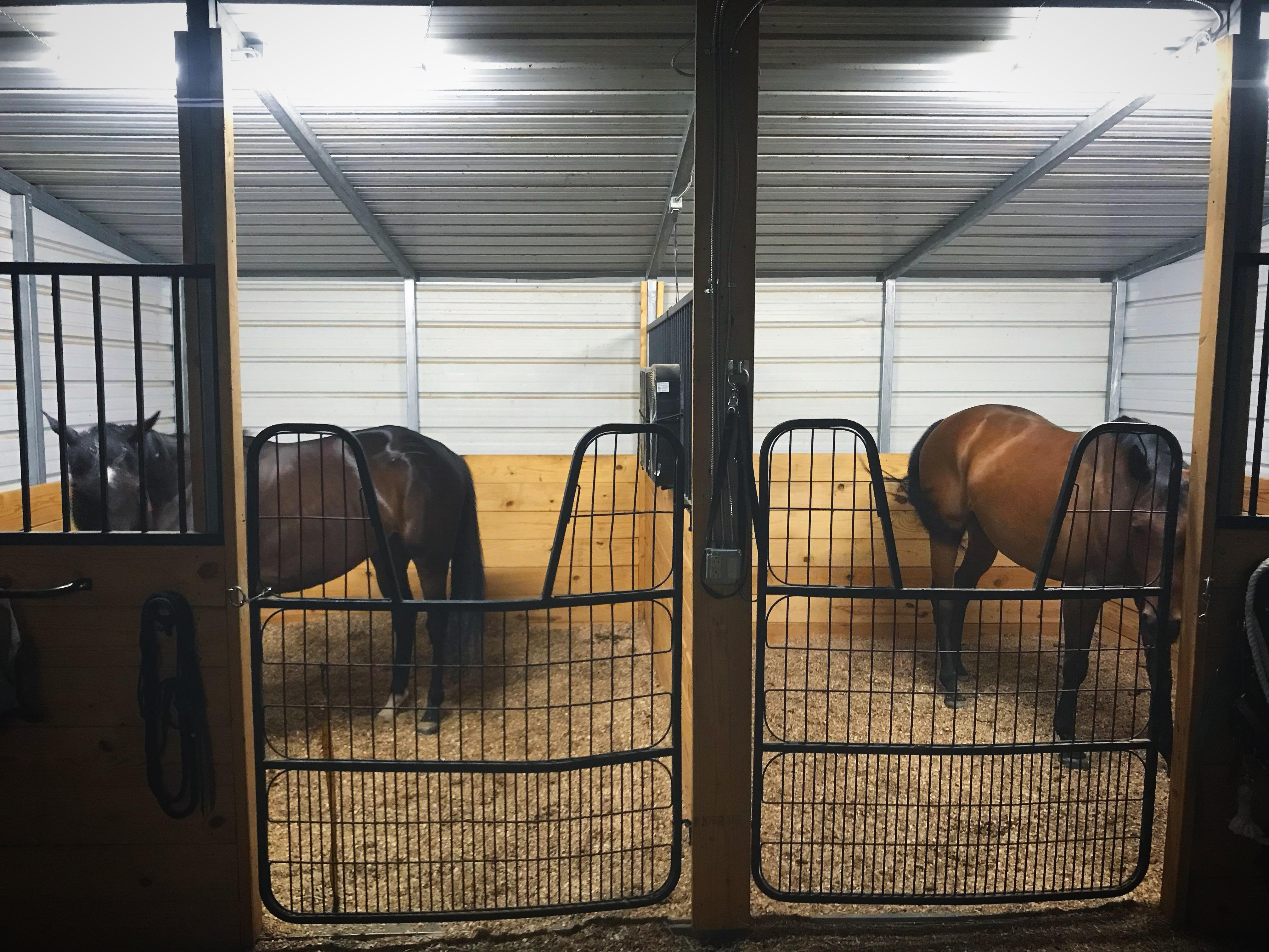 Thinking Outside The Box Stall Building A Long Term Temporary Barn Part 2 Horse Nation