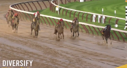 EcoVet Performance of the Week: Whitney Stakes