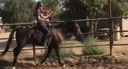 Total Saddle Fit Sunday Video: The Multitasker