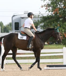 Meagan's RRP Journal: Thankful For My Little Thoroughbred