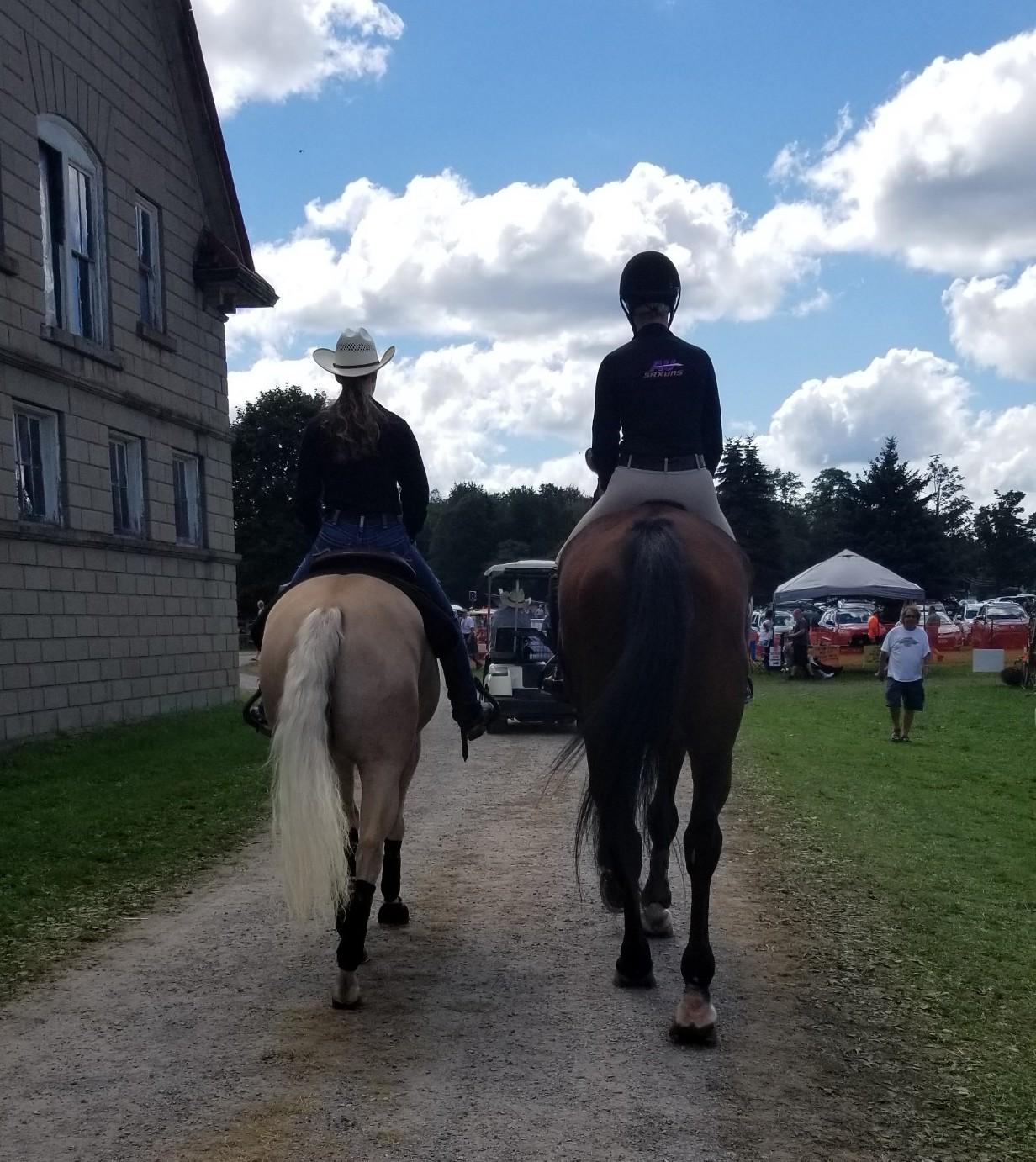 The Academic Equestrian Boundaries Horse Nation