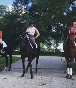 The 'United Nations' Take on the 2018 Thoroughbred Makeover