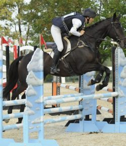 Elisa Wallace & Reloaded Voted 'America's Most Wanted Thoroughbred'