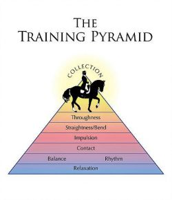 Chakras and the Training Pyramid: Part 7