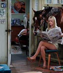 5 Random and/or Ridiculous Equine Pop Culture References