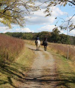 Hunters & Horseback Riders: Why We Should Just Get Along