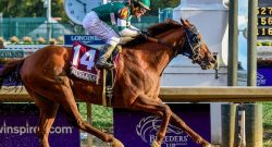 ICYMI: Accelerate Wins the Breeders' Cup Classic