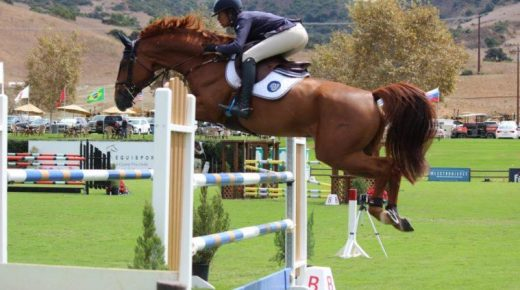 Best of JN: 'ISO a Unicorn:' A Realistic Look at Equine Purchase Prices