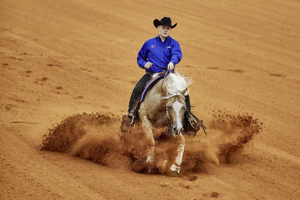 Fei Terminates Agreements With Aqha And Nrha Horse Nation