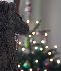 Horse Nation Shares: The Weirdest Holiday Gifts of All Time