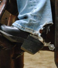 'What's That On Your Feet?': My Responses to Non-Equestrians Asking About My Spurs