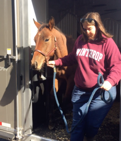 Happy, Healthy & Horsey: Handling the Holidays, Thanksgiving Edition